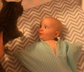 めっちゃ可愛い!ネコに大興奮する赤ちゃんの映像が世界中で爆発的再生数に!