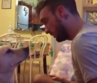 ワンコが怒ってる飼い主に必死に謝る姿が可愛すぎて怒れない…(動画)