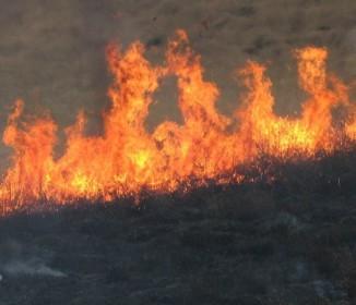 インドネシア「日本さーん、森林火災がヤバいので助けて下さい…」 日本ネット「…」