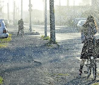 雪虫大発生、道行く人々の目や口の中に飛び込む…北海道白老町