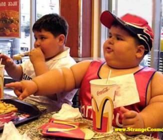太っている人の方が長生きする「肥満パラドックス」が本当に意味すること