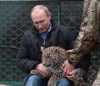ロシアのプーチン大統領が死亡したとの情報