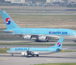韓国の空港で係員のミスでタイ人の愛犬が脱走「 仕方なく射殺」