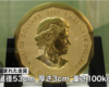 100キロ4.4億円金貨 博物館から盗難